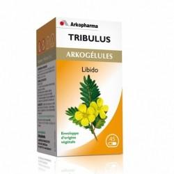 ARKOGLULES TRIBULUS 45 GELULES