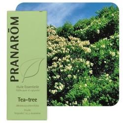 PRANAROM HUILE ESSENTIELLE BIO TEA TREE 10 ML